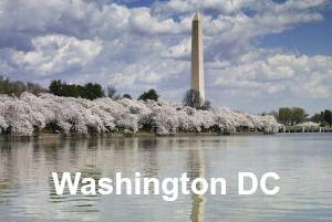 Places to Eat in Washington DC logo