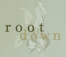 Root Down restaurant Denver CO