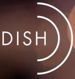 Dish Restaurant Dallas