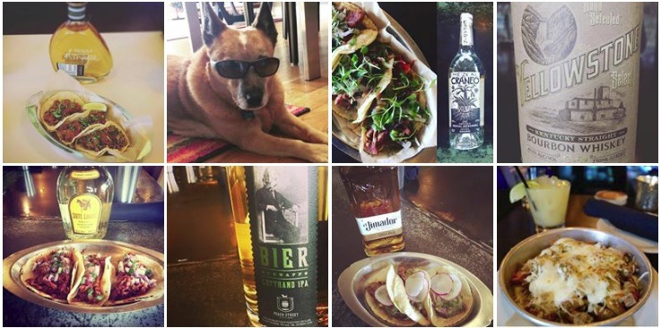 Places To Eat Dog Friendly Near Me